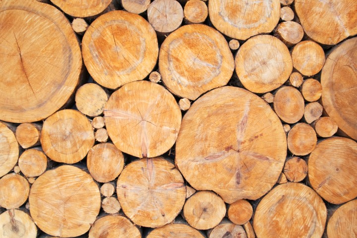Sourcing Sustainable Wood Products